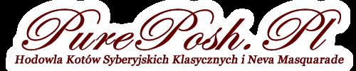 Pure Posh*PL