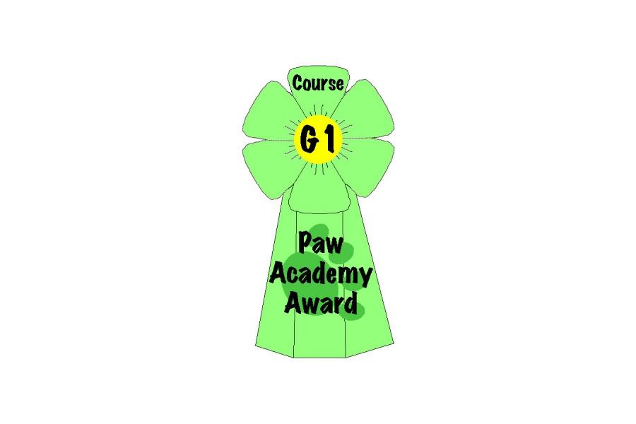 Paw Academy, 21.12.17