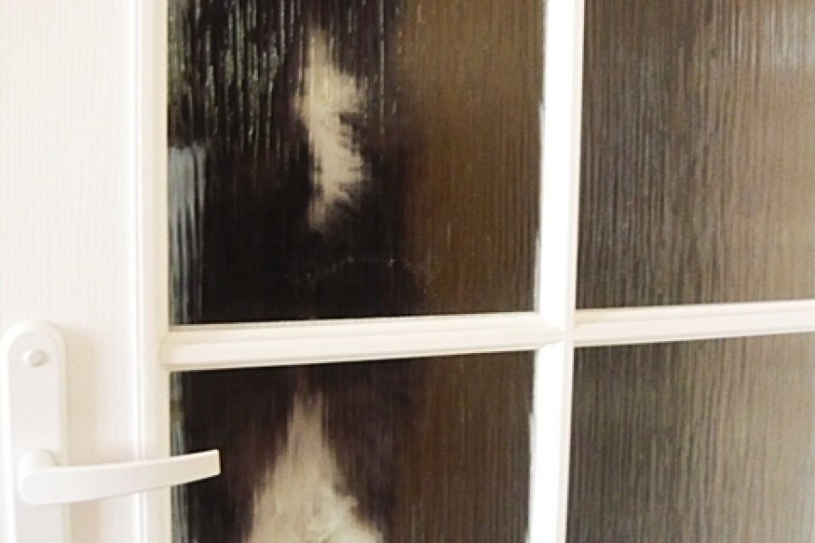"""""""Zlituj się, otwórz!"""",czyli kocie """"zwłoki"""" na drzwiach:)))"""